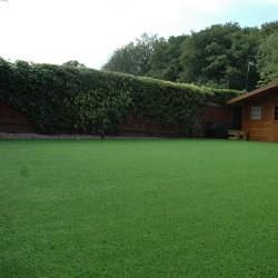 Artificial Grass 019