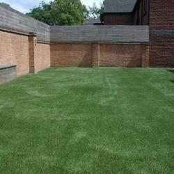 Artificial Grass 013