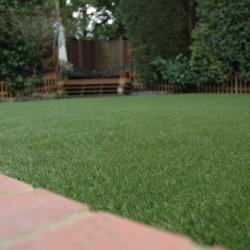 Artificial Grass 036