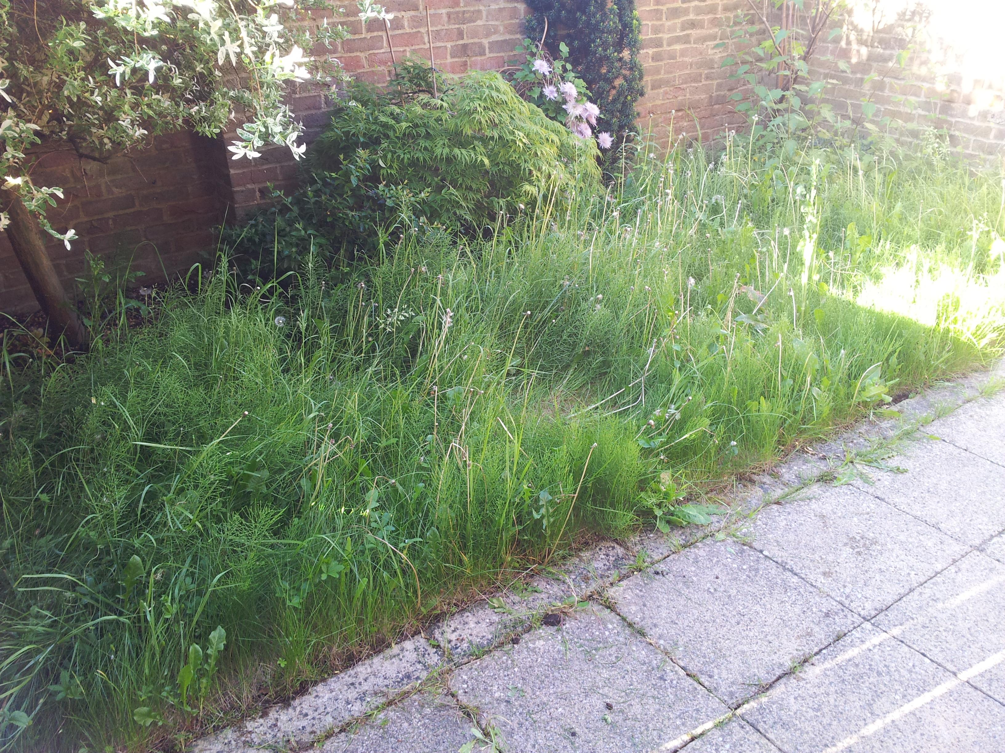 Artificial Grass installation Datchet Berkshire